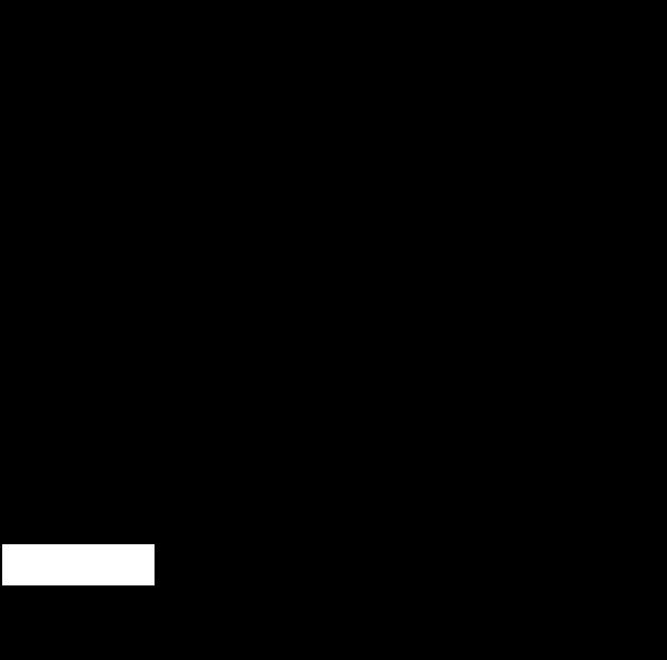 WL-Logo